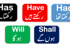 Use of Has, Have, Had with Urdu Translation - 50 Sentences of daily used for spoken English for beginners Download PDF free, Basic English lessons in Urdu, Spoken English lessons with Urdu meanings, English lessons for beginners in Urdu, English for basic level in Urdu, English Sentences in Urdu