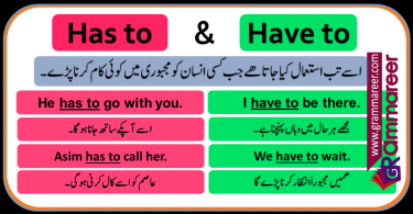 Has to and have to with Urdu Translation and Examples