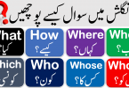 Wh Question Words with Urdu Meanings, what, when, where, why, who, whose, whom, Whenever, Whatever, Wherever, Whichever, whoever use in English with Urdu translation