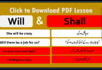 Use of Will and Shall with Urdu Translation - 50 Sentences, Basic English Grammar with Urdu Translation, Daily used English Grammar, Learn English grammar in Urdu, English to Urdu Grammar Learning, English Grammar lessons with Urdu, Useful English Structures in Urdu,