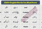 Basic English Vocabulary Words in Urdu,2000 Urdu words, List of Beginners English Words with Urdu meanings, Spoken English Course Pakistan, English Urdu Course Pakistan, Online English Course Pakistan, English with Sir Asim, English with Sir Qasim