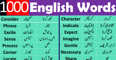 English Urdu Words List For Spoken English, Common Urdu words used in daily life,Urdu to English dictionary download, english to urdu vocabulary book,Urdu vocabulary words list PDF,1000 English words with Urdu meaning,English vocabulary words with meanings in Urdu list PDF,English vocabulary words with Urdu meaning download free,Urdu vocabulary for o levels