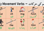 Body Movement Verbs in English with Urdu Meanings get PDF book learn body movement verbs list with example sentences and meanings for improving your English vocabulary.