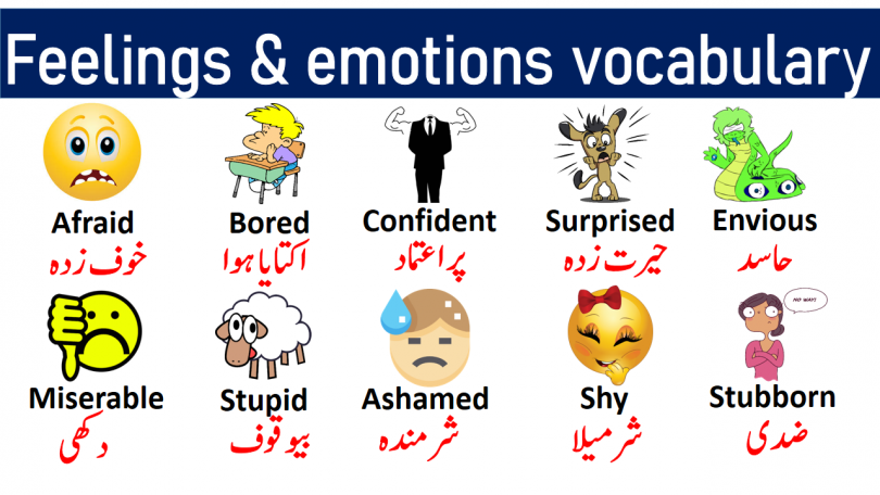 Feelings and Emotions Vocabulary List with Urdu Meanings get PDF Book Learn useful emotions vocabulary words and feeling vocabulary words with pictures for enhancing your English vocabulary