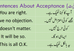 Sentences About Acceptance with Urdu Translation learn English sentences to accept someones opinion about something using Hindi and Urdu translation for improving your spoken English.