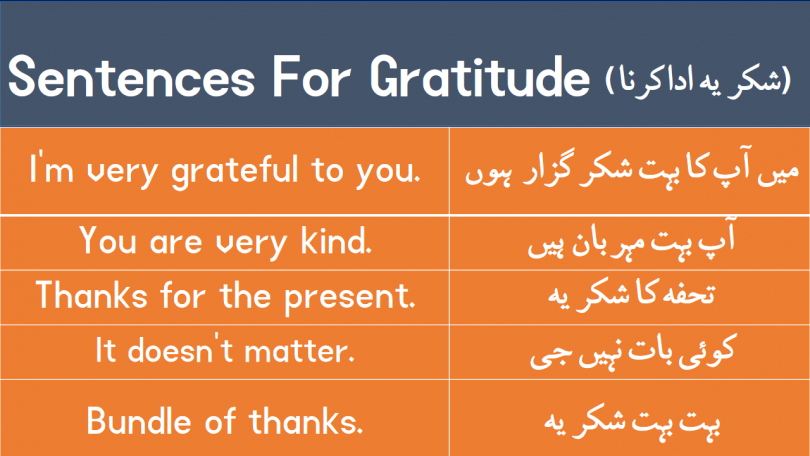 "Sentences For Gratitude with Urdu Translation download PDF Book learn different ways to say ""thank you"" with Urdu and Hindi translation for improving your English speaking skills."