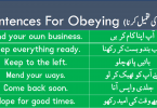 Sentences For Obeying the Order with Urdu Translation learn useful English sentences about obeying the order with Urdu and Hindi translation for improving your English speaking skills.