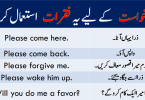 Sentences for Request with Urdu or Hindi Translation learn some useful English sentences for requesting someone with Urdu and Hindi translation