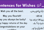 Sentences For Wishing with Urdu Translation download PDF Book learn English sentences and different ways to wish someone on a special day with Urdu and Hindi translation for improving your English speaking.