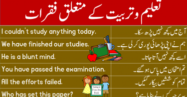 Sentences about Education and Training in Urdu learn common English sentences in Urdu and Hindi to talk about education and training for enhancing your English speaking skills.