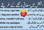 Sentences for Pardon and sorry with Urdu Translation learn commonly used English sentences to say sorry with Urdu and Hindi translation