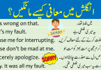 Ways to Say I Am Sorry in English with Urdu learn how to say sorry using different sentences and useful phrases in English