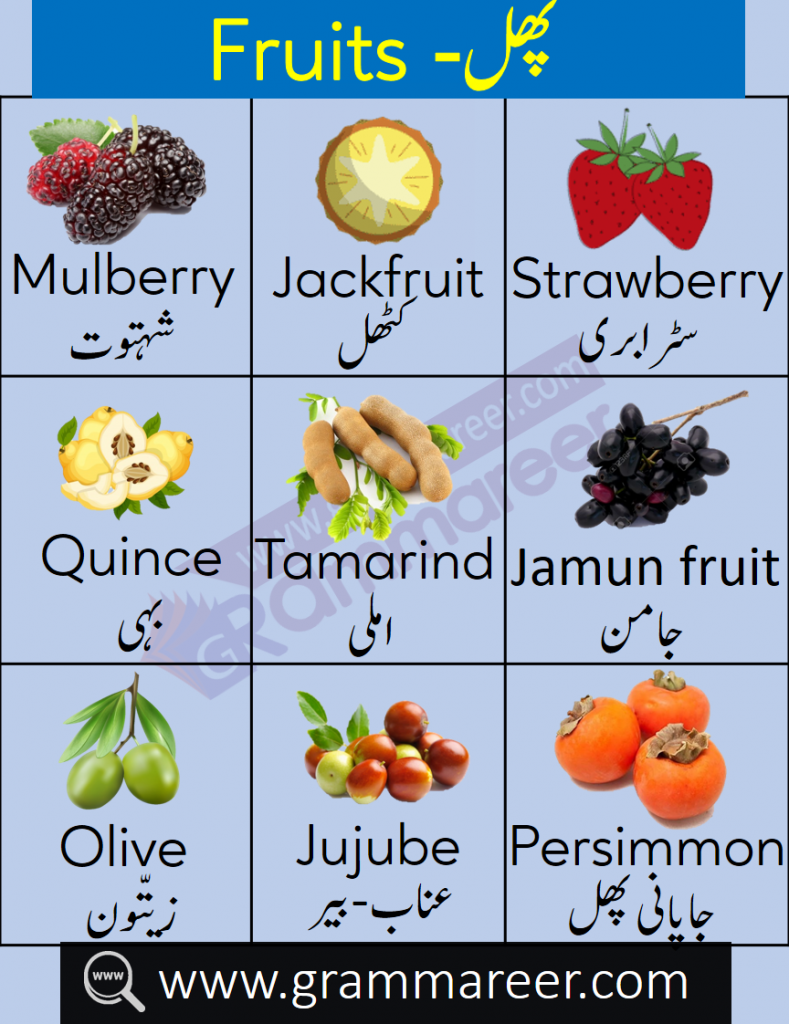 Fruit Names in Urdu
