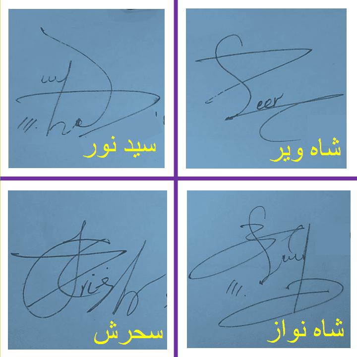 Syed Noor, Shahveer, Sehrish, Shah nawaz beautiful signature styles