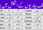 Diseases Names in English With Urdu Meanings, diseases dictionary in Urdu, diseases in Urdu, diseases name list in Urdu and English, diseases names in Urdu, diseases names list Urdu, Diseases vocabulary in Urdu, heza disease in Urdu