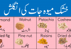 Dry Fruits Vocabulary List with Meanings in Urdu learn common dry fruits names in English and Urdu with pictures list of names of dry fruits in Pakistan and India with their Urdu meanings