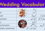 English Vocabulary For Marriage / Wedding with Urdu Meanings
