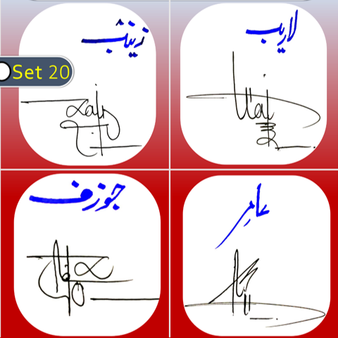 Zainab, Laraib, Jozaf, Amir handwritten signatures styles