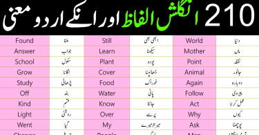 210 basic english vocabulary words with Urdu meanings
