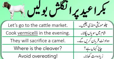 English Speaking Practice in Urdu to Talk about Eid ul Azha, Eid ul Adha English sentences with Urdu and Hindi translation